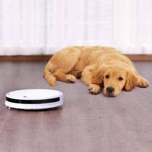 Xiaomi Roborock Xiaowa Lite usisavač APP - bijeli - image Xiaomi-Xiaowa-Robot-Vacuum-Cleaner-Youth-Version-White-567430--300x300 on https://smartmall.hr